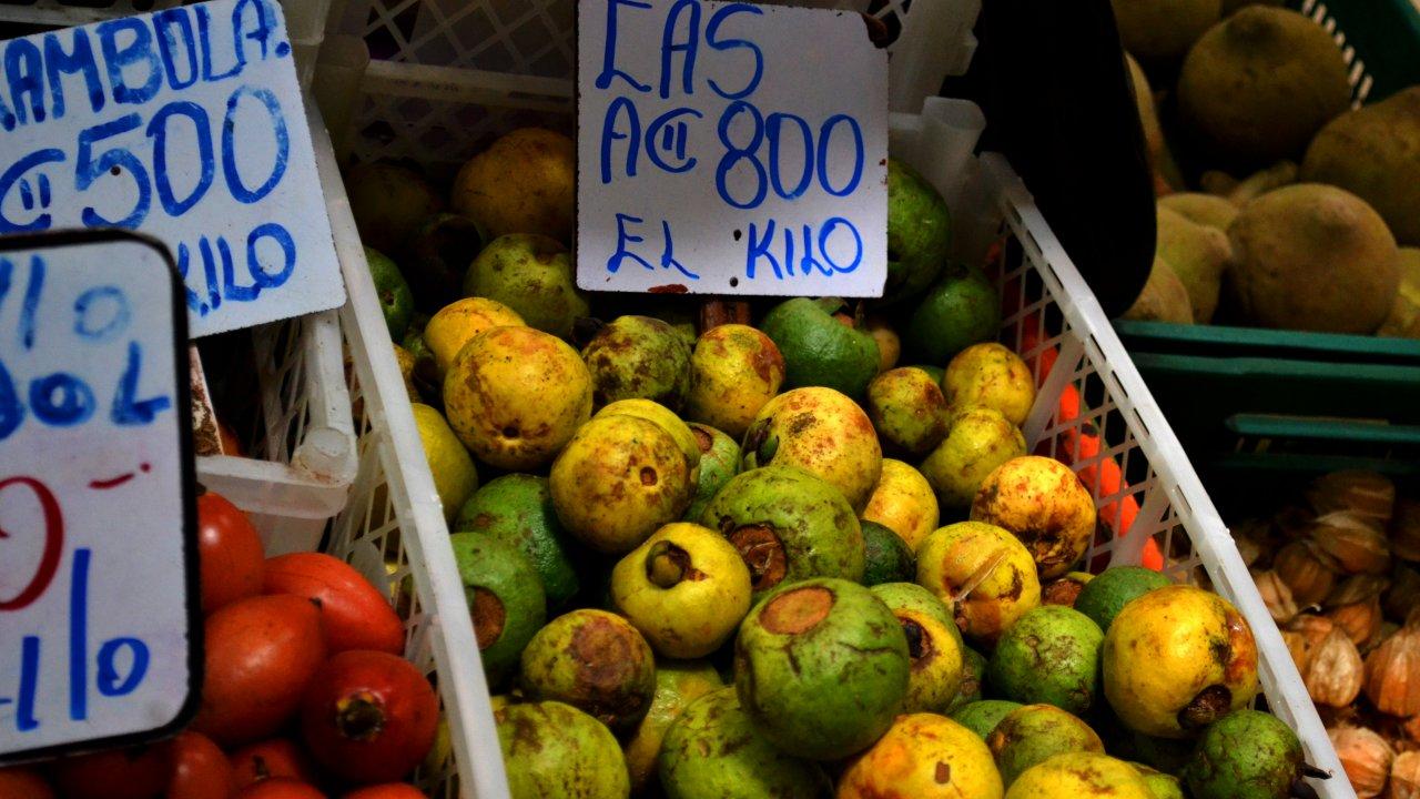 Taste tropical fruits